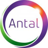 Antal International Executive Search,