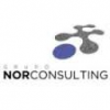Grupo Norconsulting.